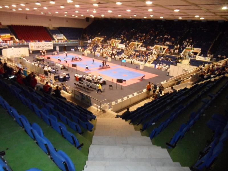 Kadetten-(U15)-Europameisterschaft 2013 in Bukarest - Halleninnenraum von oben