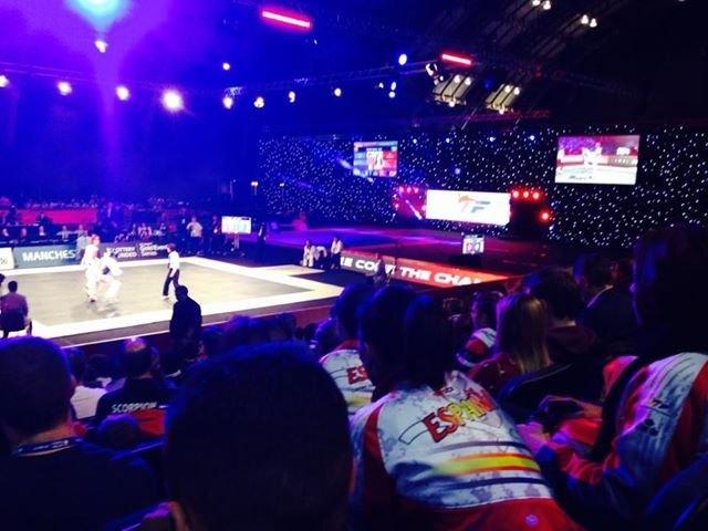 WTF World Grand Prix 2013 Manchester - Wettkampfhalle Innenraum - Bild 2