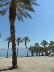 Galeriebild Israel Open 2014 - 6. Tag: Totes Meer/En Gedi/Masada