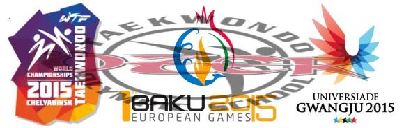 Internationale Meisterschaften 2015 mit TKD Özer - Titel