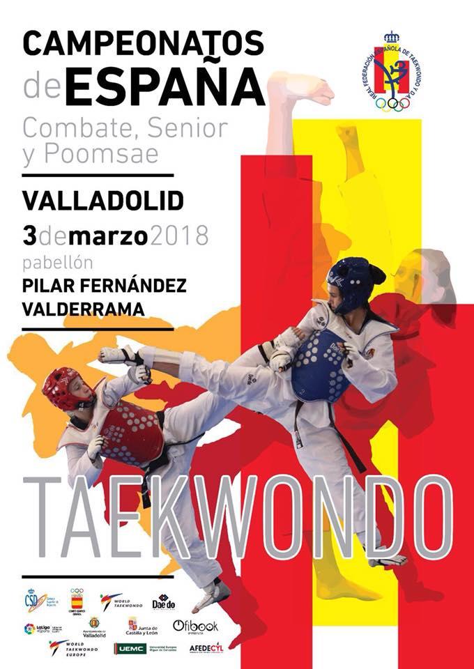 Plakat Spanische Meisterschaft Senioren 2013