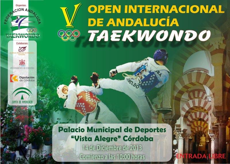 Plakat V. Open Internacional de Andalucía 2013